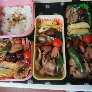 40㎝は積もったかなぁ~~ ☆野菜炒め弁当☆