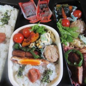 美味しい魚を食べたいと思う  ☆マルシンハンバーグ弁当☆