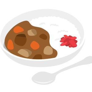 サントリー「金麦(350ml)×6缶(夏のあいあいカレー皿キャンペーン応募券6枚付き)」が1,000名に当たる!(21/7/8まで)