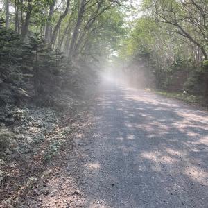 111、北海道知床半島60km