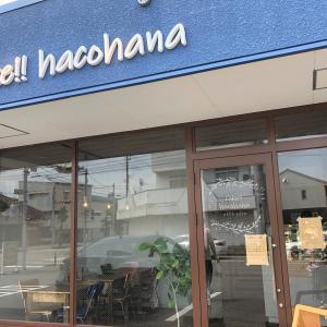 cake!! hacohanaに行ってきました