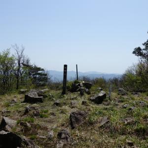 続・新緑の青野山へ