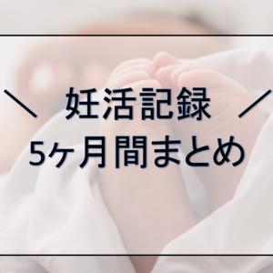 【妊活記録】5ヶ月目にして病院に行きました