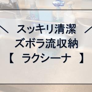 【パナソニック】ズボラ流シンクの使い方【ラクシーナ】