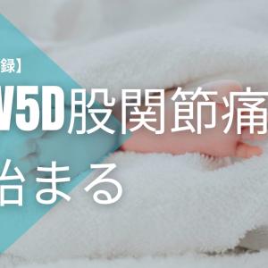 【妊娠の記録】13w5d股関節痛が始まる 一人目の時はなかった痛みで歩くのもヤダ