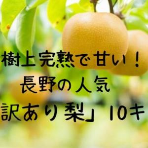 樹上完熟で甘い!長野の人気「訳あり梨10キロ!」がおすすめの理由
