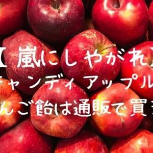 【嵐にしやがれ】に登場!〈キャンディアップル〉のりんご飴は通販で買える!