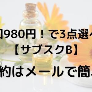 【サブスクBの解約】はメールで簡単!初回980円で気軽に試すべき!
