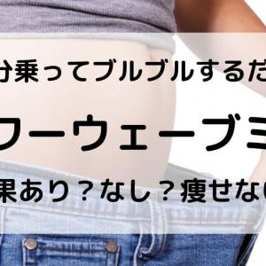 【口コミ】パワーウェーブミニは効果なし?痩せない?消費カロリーはどれぐらい?