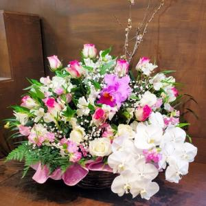 ももじゅ 感謝のお花 ありがとうのお花