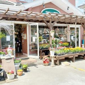 4月8日花国湘南台店-リアル店舗-素敵なお花がたくさん入荷しました