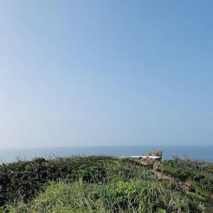 【南伊豆】絶景!タライ岬!弓ヶ浜は海だけじゃない!