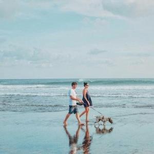 【健康】中高年、シニア世代に、海が体にいい6つの理由!