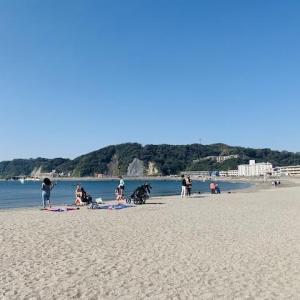 【逗子・葉山】絶景!!散策!逗子海岸・森戸海岸・森戸神社