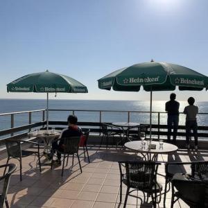【葉山】海の見えるレストランでランチと、葉山の海のお散歩!そして、葉山コロッケ!