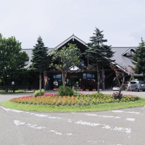 秋田で一番広い芝生の広場と言っても過言ではありませんね!