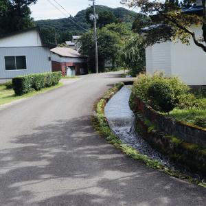 懐かしい日本の風景です(*´ω`)