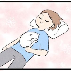 お腹に猫を乗せると幸せになれるって聞いたから