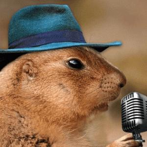 帽子をかぶるとハゲるの?【実体験から教えます】