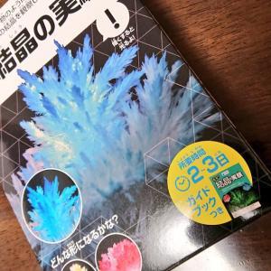 【実験】光る!結晶の実験(ナガオカラボ)をやってみた!画像付き
