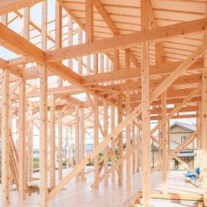 杉と桧の無垢材の健康効果。安心して健康に過ごせる材料を使って家を建てる。