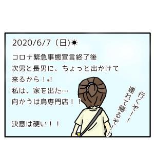 すみれちゃんと出会った日 前編