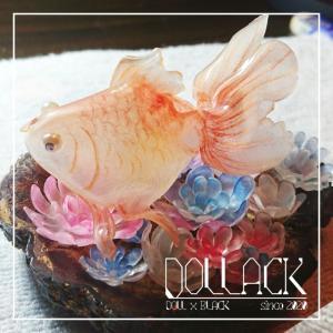 金魚リベンジ
