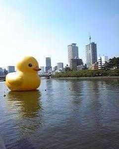 水都大阪2009/夏*ラバーダックプロジェクト