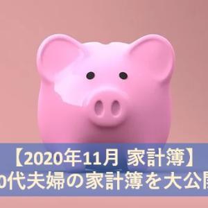 【2020年11月 家計簿】20代共働き夫婦の家計簿を大公開