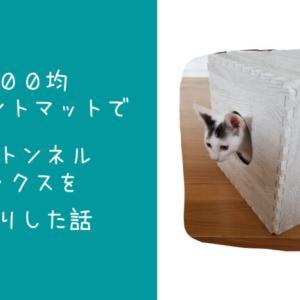 100均ジョイントマットで猫用トンネルボックスを手作りした話