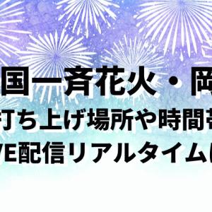 全国一斉花火(7/24)岡山県の打ち上げ場所や時間!LIVE配信リアルタイムはある?