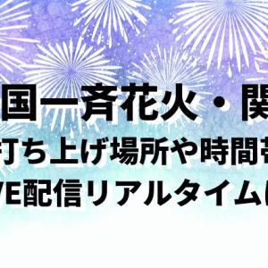 全国一斉花火(7/24)関西の打ち上げ場所や時間!Twitter情報とLIVE配信はある?