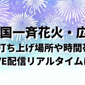 全国一斉花火広島(7/24)場所や時間帯・LIVE配信リアルタイムはあるか調べてみた