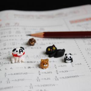 勉強が苦手だっていいんだよ