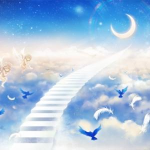 【リピ確定】天使ちゃんと85りまくりの昇天浮遊!【83】