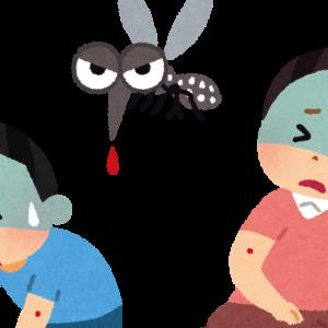 一匹の蚊から学ぶリスクコントロール