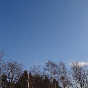 雪が融けてはまた降って ・・・今日の最低気温はマイナス6.5度!