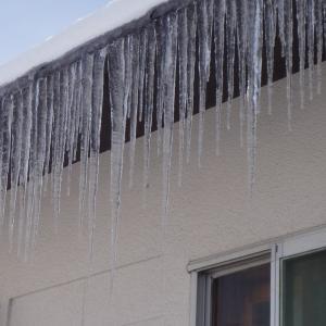 今季初の真冬日・初雪かき ・・・今季最低気温マイナス9.5度!