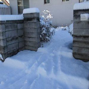 今季初の本格的な積雪 ・・・今季初の雪かきとなりました!