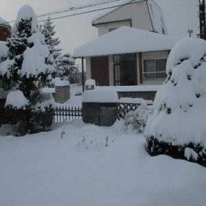 体調不良の時の「雪かき」と「厳しい寒さ」は辛い!