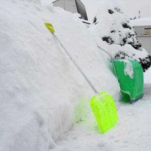 今季一番の大雪に四苦八苦 ・・・雪かきで疲労困憊!
