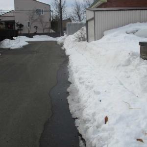 時期外れの暖かさで積雪量が激減!
