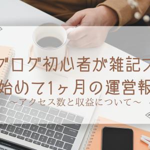 #9 【ブログ運営報告】ブログ初心者の雑記ブログ〜1ヶ月目のPV数と収益について〜