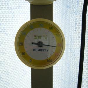 88.台風一過、蒸し暑い、湿度80%越え