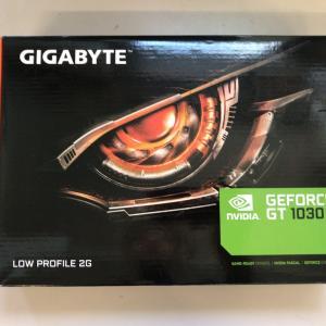 2021年でもGeForce GT1030でゲームを遊べるのかレビュー
