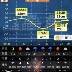 2019.11.18 幌武意漁港