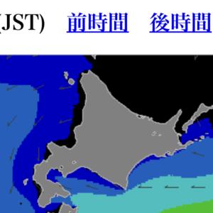 2020.03.02 ワッカケ岬 マガレイ調査