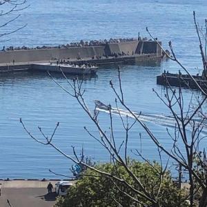 2019.04.28 幌武意漁港