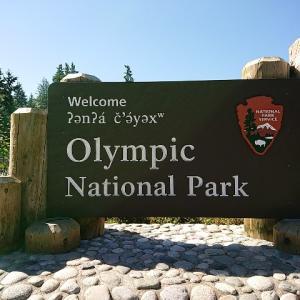 オリンピック国立公園(ハリケーンリッジ)に行ってきた!