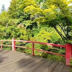 シアトルの日本庭園クボタガーデンに行ってきた!